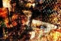 18/04/2015: Demolition 2.0